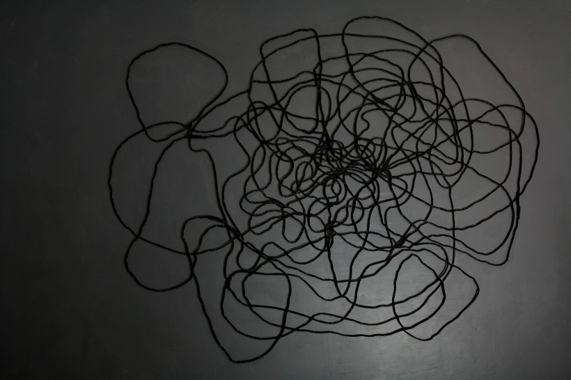 Lyn Horton, Velvet Installation, 2012, #1.jpg