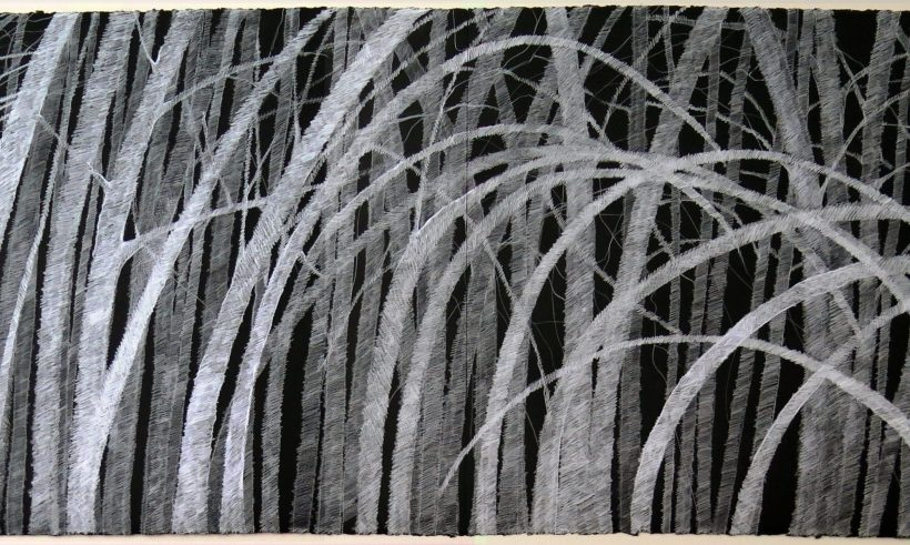 cropped-lyn-horton-west-street-birches-22-in-h-x-60-in-w-colored-pencil-on-black-rag-paper.jpg