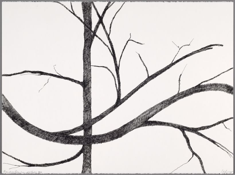 Lyn Horton, Branches black on white #10, 2018, 22 in h x 30 in w, ink on rag paper