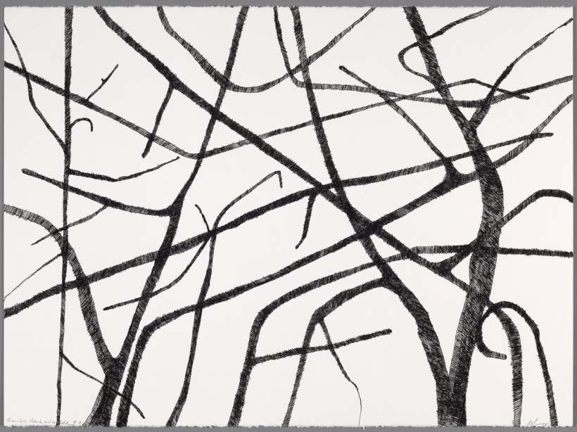 Lyn Horton, Branches black on white #2, 2018, 22 in h x 30 in w, ink on rag paper