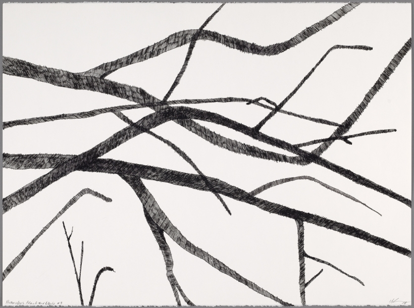 Lyn Horton, Branches black on white #3, 2018, 22 in h x 30 in w, ink on rag paper