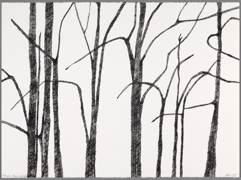 Lyn Horton, Branches black on white #4, 2018, 22 in h x 30 in w, ink on rag paper