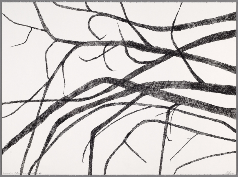 Lyn Horton, Branches black on white #5, 2018, 22 in h x 30 in w, ink on rag paper