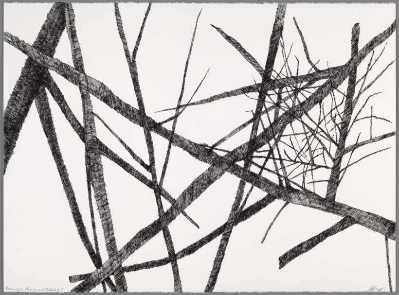 Lyn Horton, Branches black on white #7, 2018, 22 in h x 30 in w, ink on rag paper