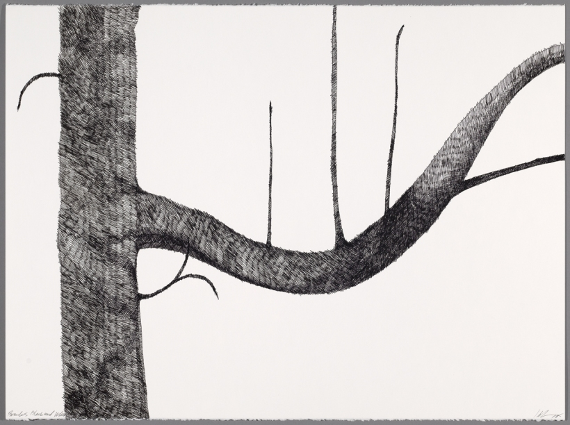Lyn Horton, Branches black on white #8, 2018, 22 in h x 30 in w, ink on rag paper