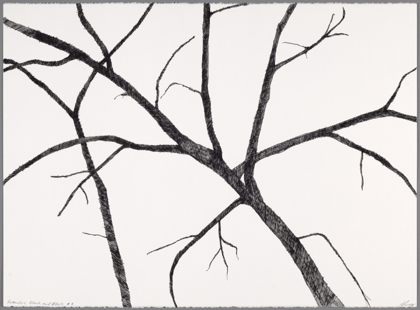 Lyn Horton, Branches black on white #9, 2018, 22 in h x 30 in w, ink on rag paper