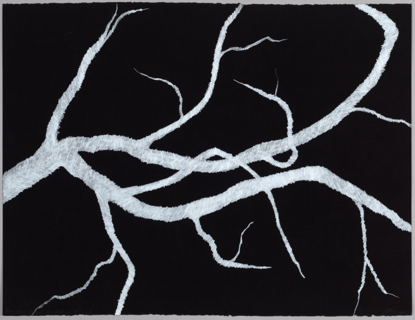 Lyn Horton, Branches white on black #1, 2018, 22 in h x 30 in w, colored pencil on black rag paper