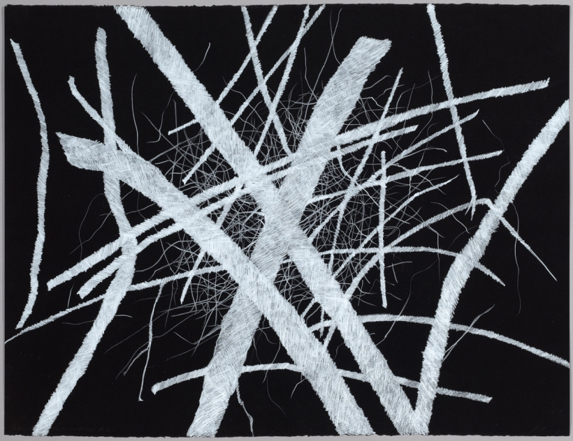 Lyn Horton, Branches white on black #3, 2018, 22 in h x 30 in w, colored pencil on black rag paper
