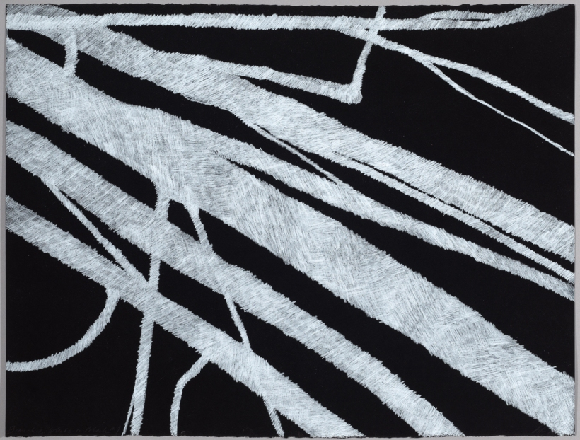 Lyn Horton, Branches white on black #9, 2018, 22 in h x 30 in w, colored pencil on black rag paper