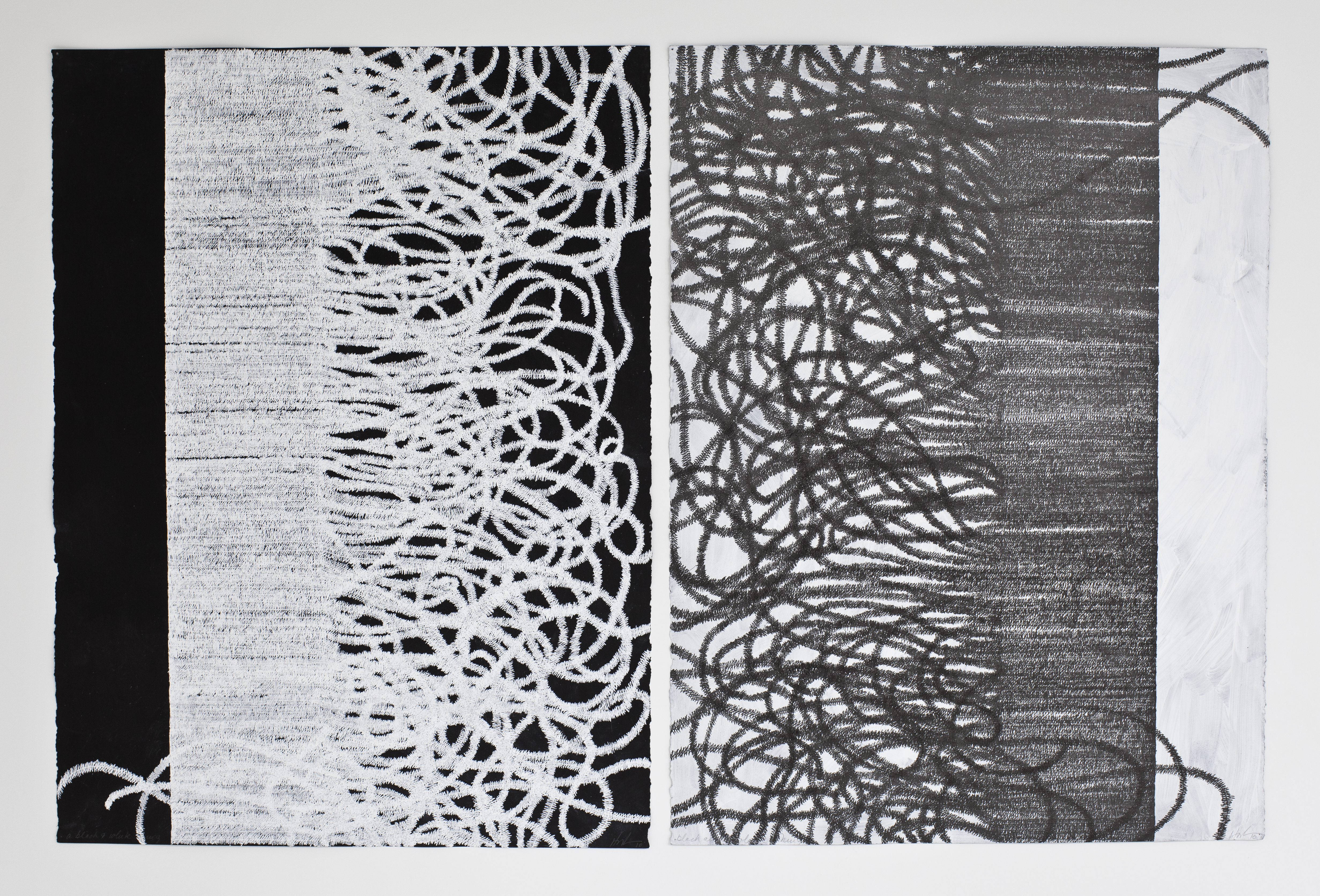 Lyn Horton, copyright, Black & White Things, 2011, 30 inches x 44 inches, ink on gouache on black paper hires